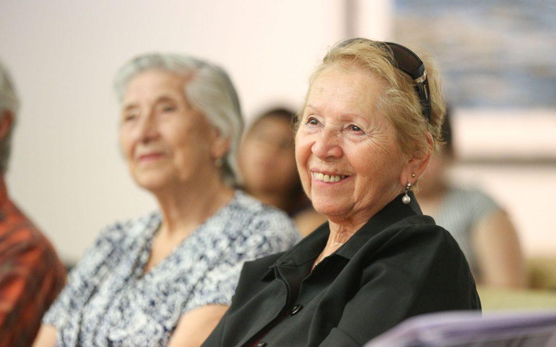Calilla Responsable en el Museo de Artes Visuales de Santiago